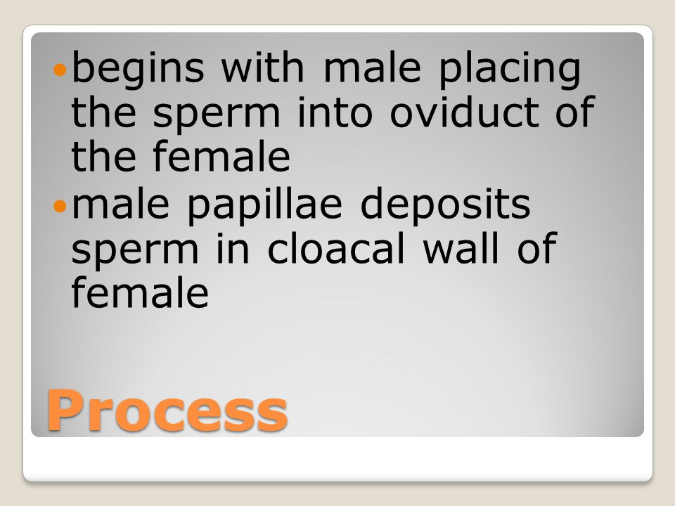 Different from mammals young are not carried in the hens body develop inside a fertilized egg outside the hens body