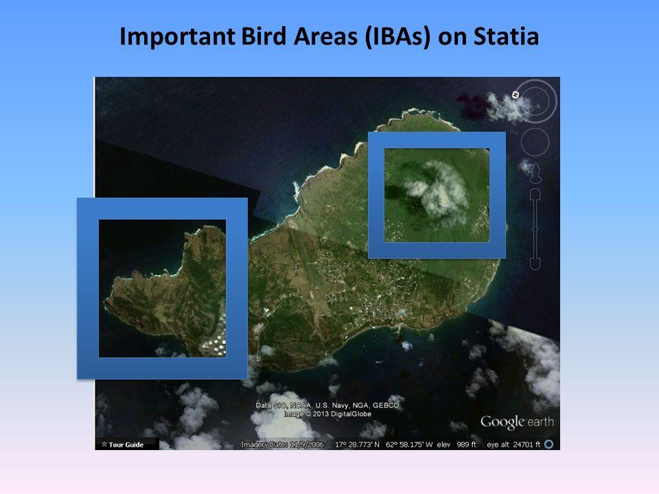 Important Bird Areas (IBAs) on Statia