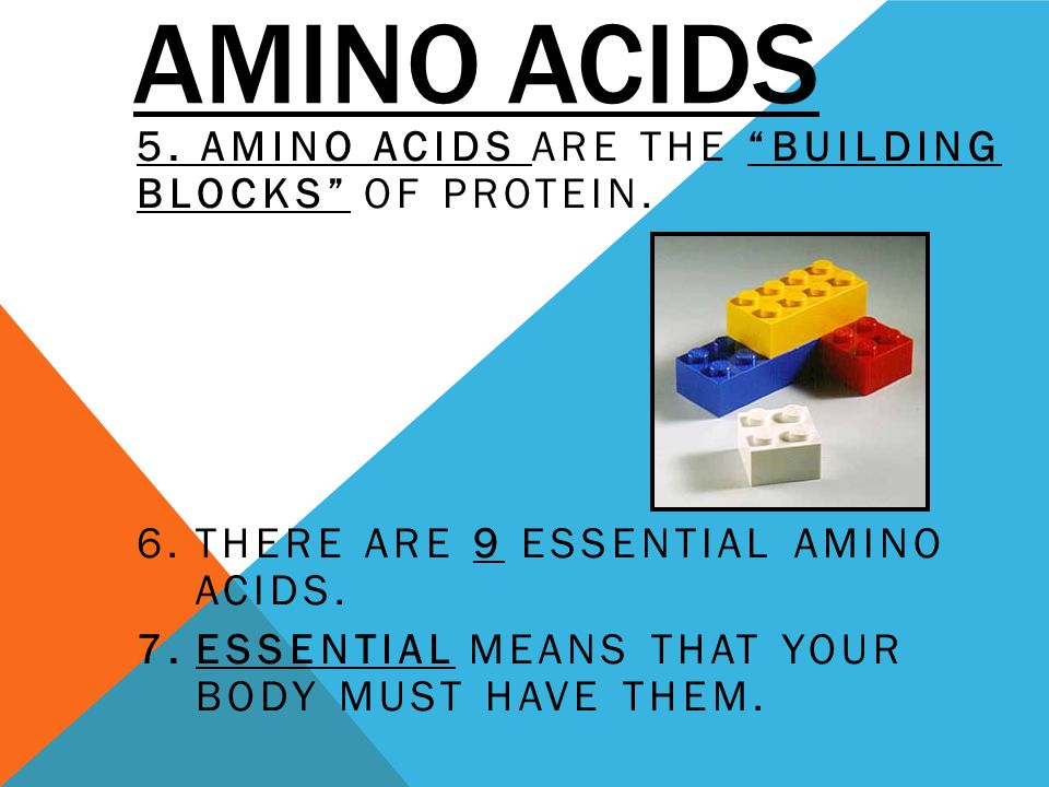AMINO ACIDS 5. AMINO ACIDS ARE THE BUILDING BLOCKS OF PROTEIN. 6.THERE ARE 9 ESSENTIAL AMINO ACIDS. 7.ESSENTIAL MEANS THAT YOUR BODY MUST HAVE THEM.