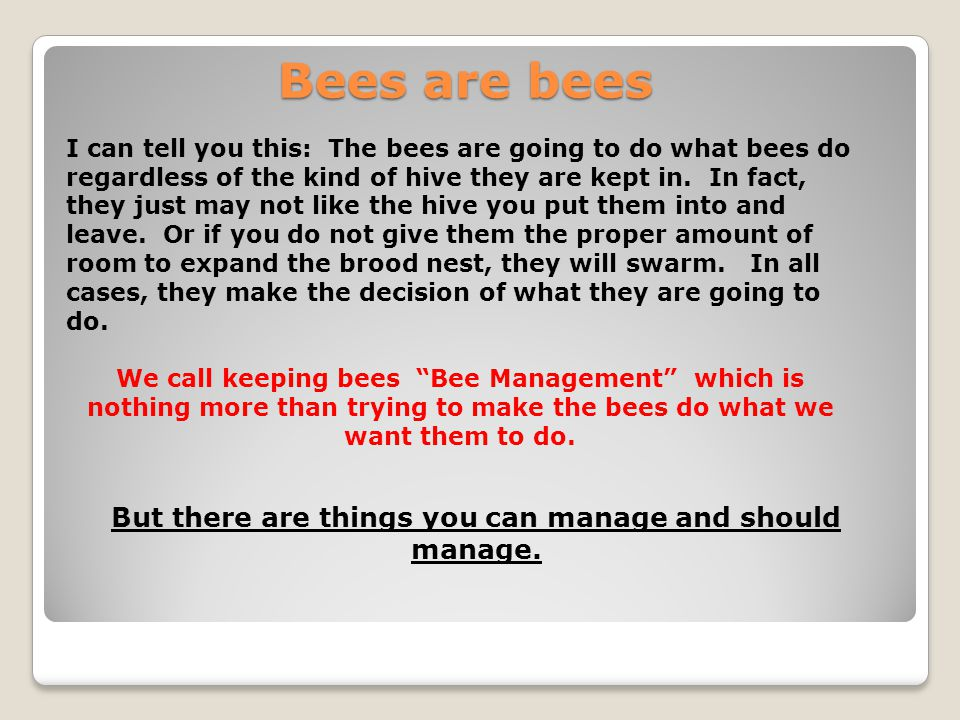 Bees are bees I can tell you this: The bees are going to do what bees do regardless of the kind of hive they are kept in. In fact, they just may not l