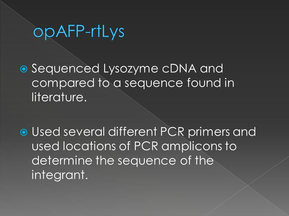 Sequenced Lysozyme cDNA and compared to a sequence found in literature.