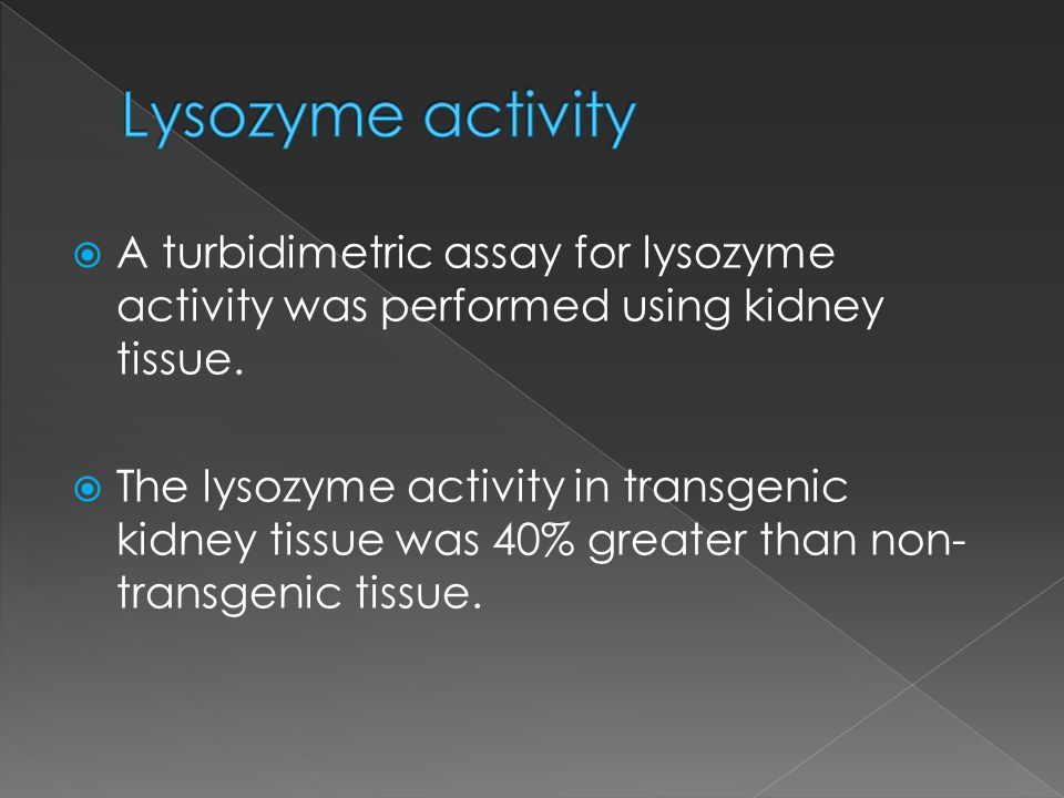 A turbidimetric assay for lysozyme activity was performed using kidney tissue.
