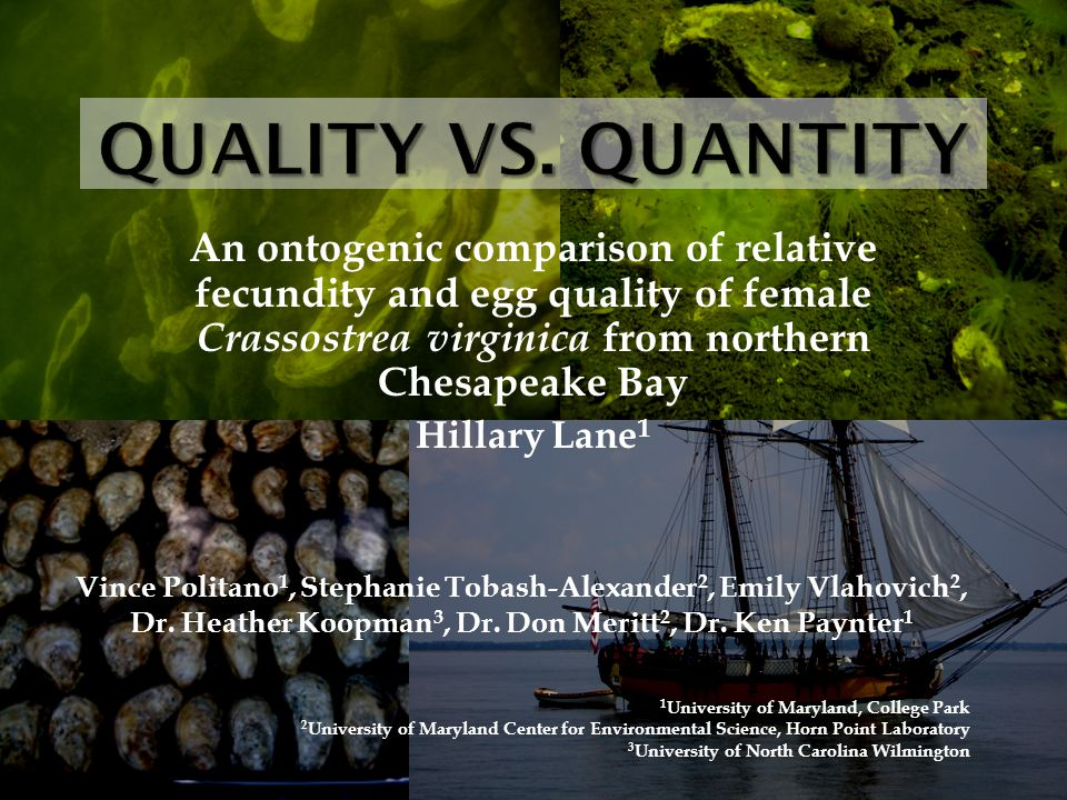 An ontogenic comparison of relative fecundity and egg quality of female Crassostrea virginica from northern Chesapeake Bay Hillary Lane 1 Vince Politano 1, Stephanie Tobash-Alexander 2, Emily Vlahovich 2, Dr.