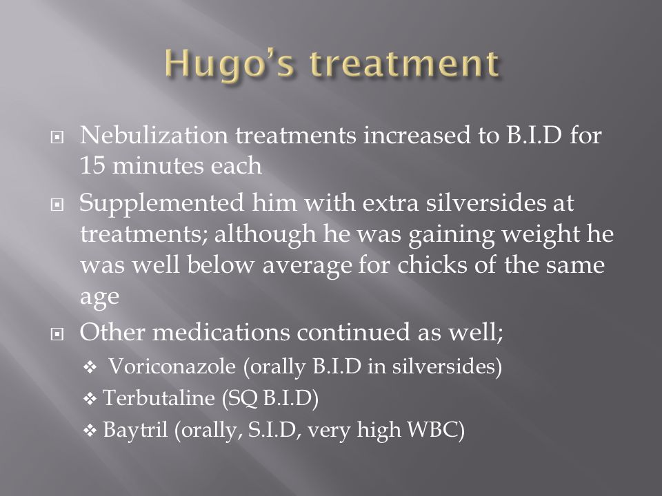 Nebulization treatments increased to B.I.D for 15 minutes each Supplemented him with extra silversides at treatments; although he was gaining weight he was well below average for chicks of the same age Other medications continued as well; Voriconazole (orally B.I.D in silversides) Terbutaline (SQ B.I.D) Baytril (orally, S.I.D, very high WBC)