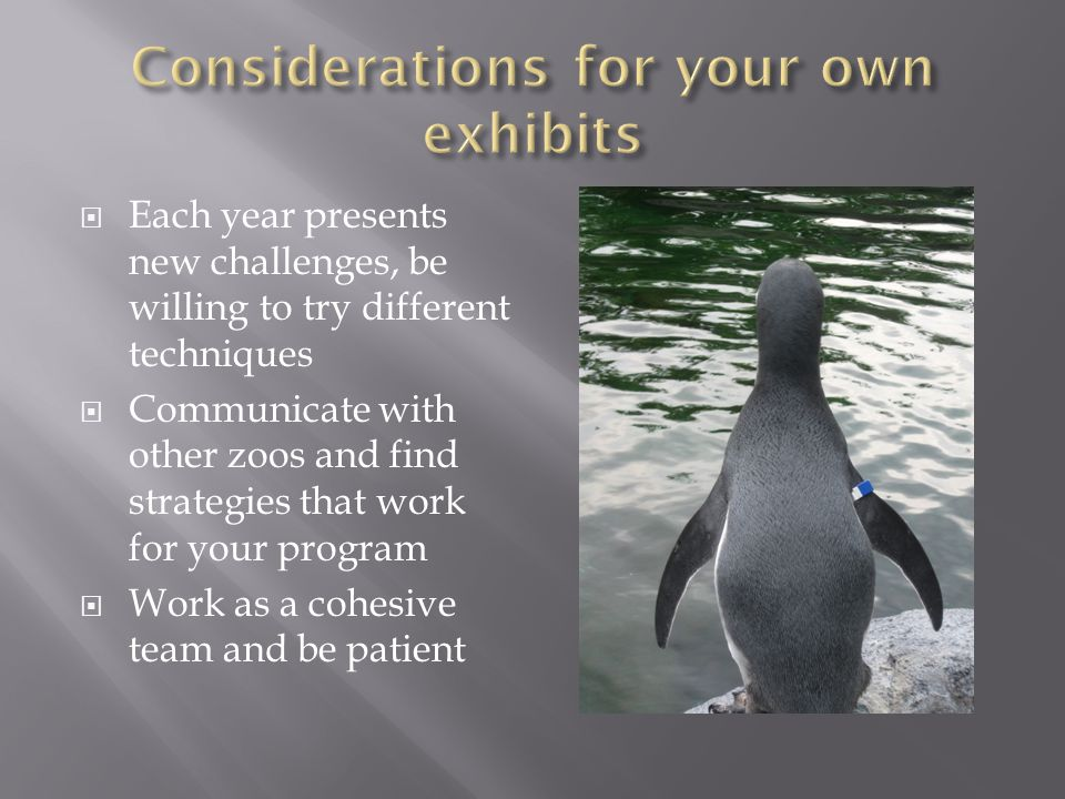 Each year presents new challenges, be willing to try different techniques Communicate with other zoos and find strategies that work for your program Work as a cohesive team and be patient