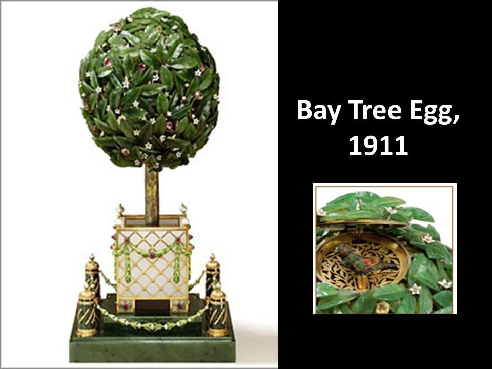 Bay Tree Egg, 1911