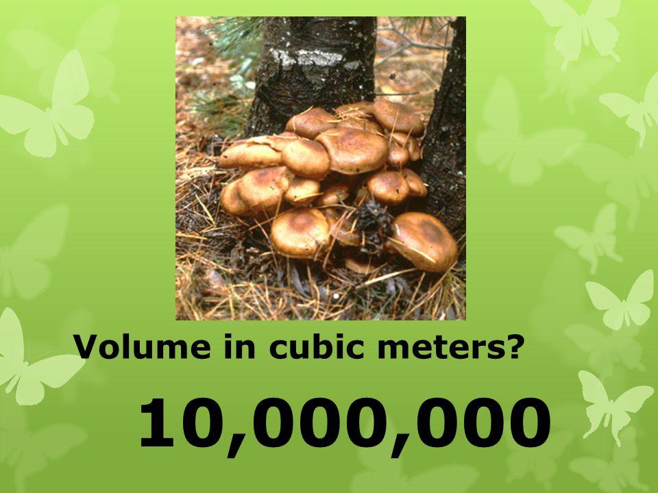 Volume in cubic meters? 10,000,000