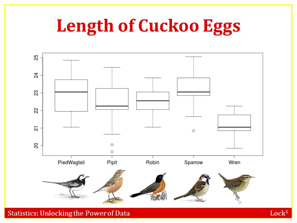 Statistics: Unlocking the Power of Data Lock 5 F-distribution Can we use the F-distribution to calculate the p-value for the Cuckoo bird eggs? a)Yes b