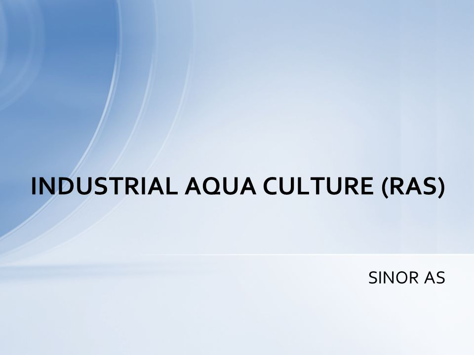SINOR AS INDUSTRIAL AQUA CULTURE (RAS)