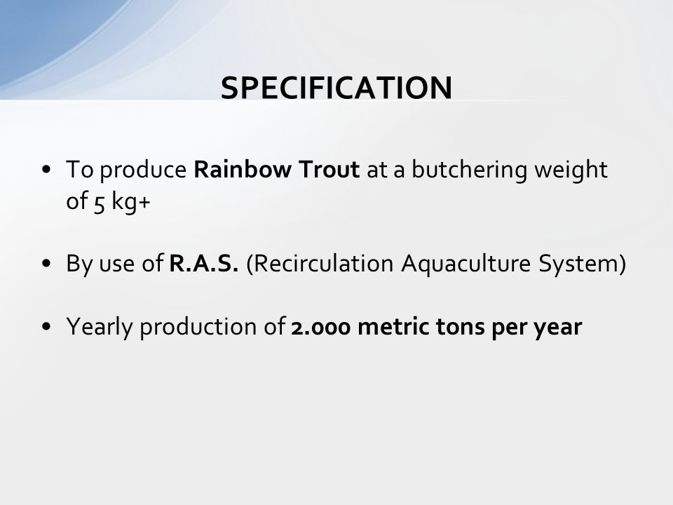 To produce Rainbow Trout at a butchering weight of 5 kg+ By use of R.A.S. (Recirculation Aquaculture System) Yearly production of 2.000 metric tons pe