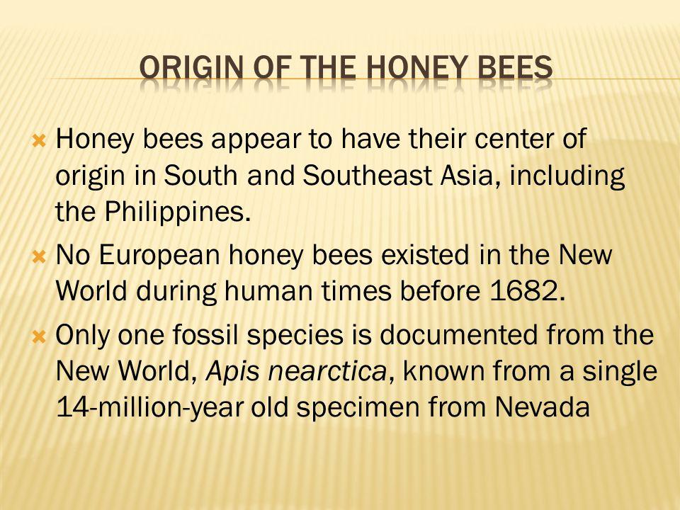 Native Americans called the European honey bees A white mans flies.