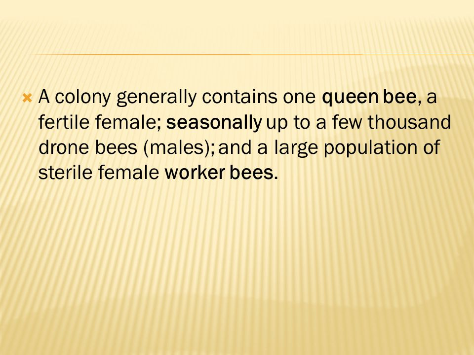 The queen actually can choose to fertilize the egg she is laying, usually depending on into which cell she is laying.