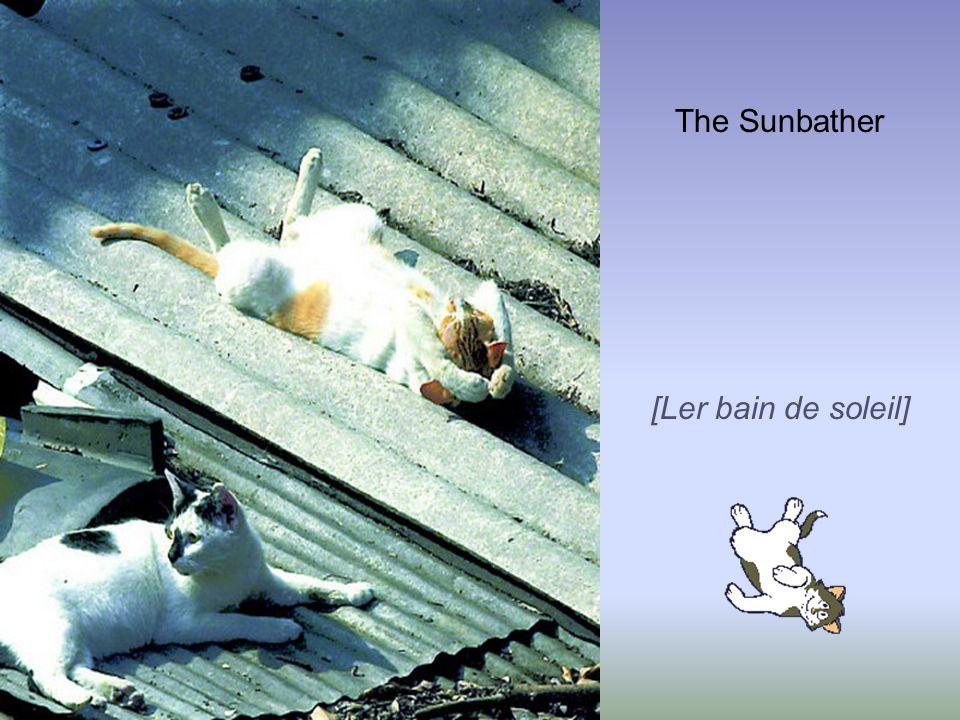 The Sunbather [Ler bain de soleil]