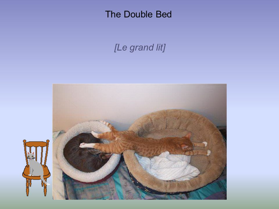 The Double Bed [Le grand lit]