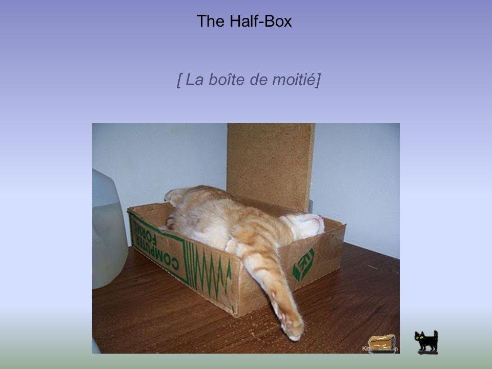 The Half-Box [ La boîte de moitié]