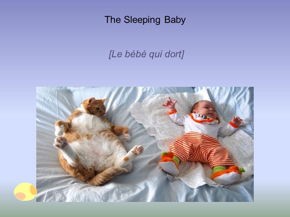 The Sleeping Baby [Le bébé qui dort]