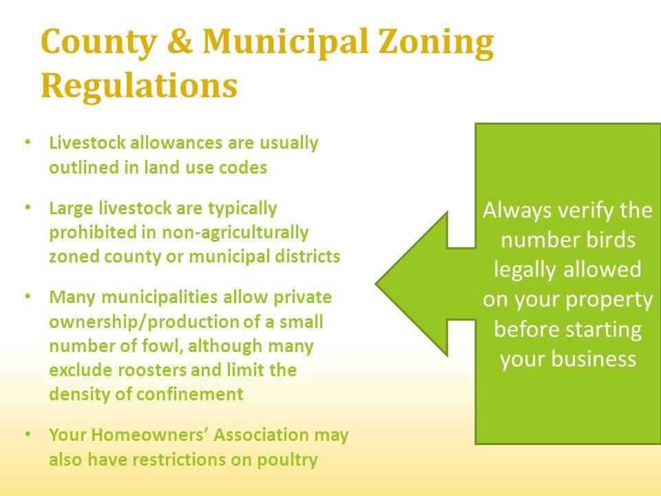 County & Municipal Zoning Regulations Livestock allowances are usually outlined in land use codes Large livestock are typically prohibited in non-agriculturally zoned county or municipal districts Many municipalities allow private ownership/production of a small number of fowl, although many exclude roosters and limit the density of confinement Your Homeowners Association may also have restrictions on poultry Always verify the number birds legally allowed on your property before starting your business