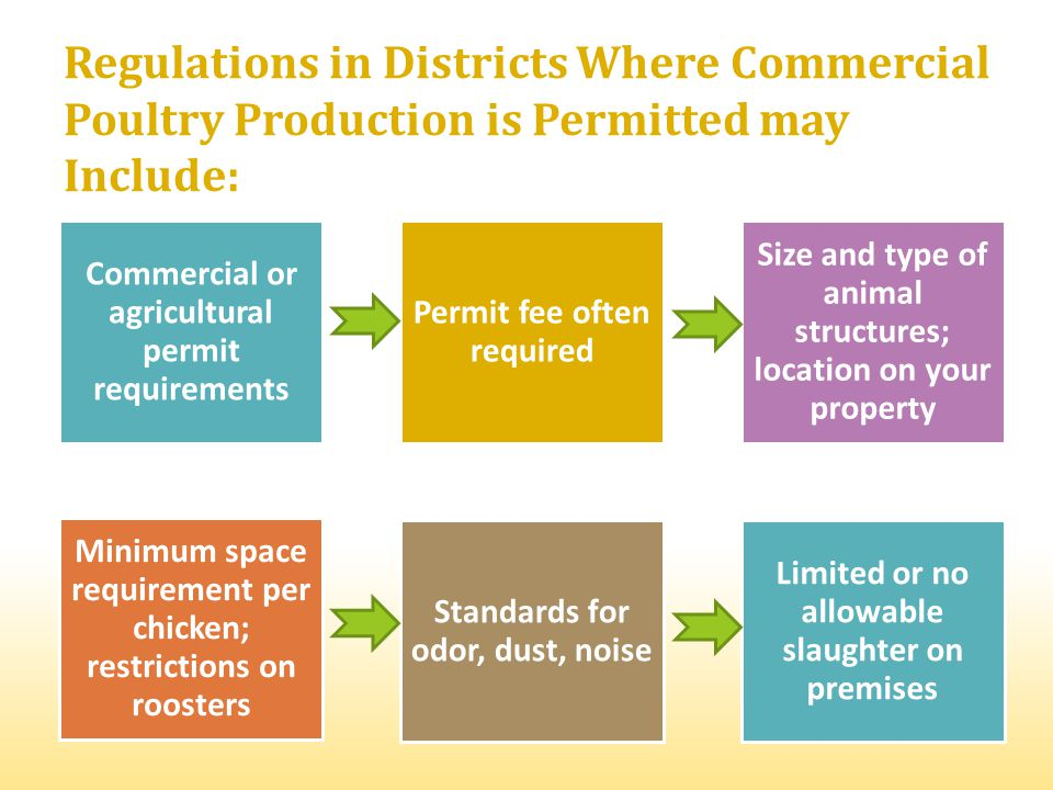 Regulations in Districts Where Commercial Poultry Production is Permitted may Include: Commercial or agricultural permit requirements Permit fee often required Size and type of animal structures; location on your property Minimum space requirement per chicken; restrictions on roosters Standards for odor, dust, noise Limited or no allowable slaughter on premises
