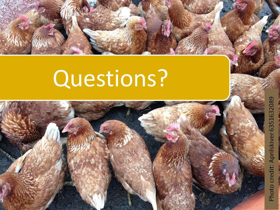 Questions? Photo credit: Aprilskiver 6351632089