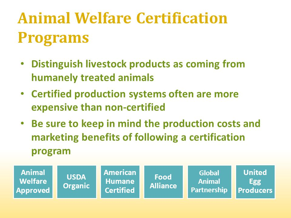 Animal Welfare Certification Programs Distinguish livestock products as coming from humanely treated animals Certified production systems often are more expensive than non-certified Be sure to keep in mind the production costs and marketing benefits of following a certification program Animal Welfare Approved USDA Organic American Humane Certified Food Alliance Global Animal Partnership United Egg Producers
