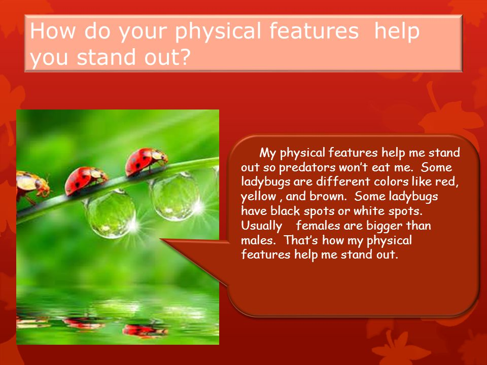 How do your physical features help you stand out.