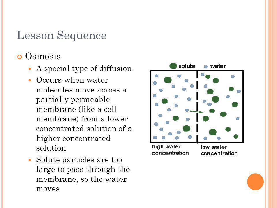Lesson Sequence Osmosis A special type of diffusion Occurs when water molecules move across a partially permeable membrane (like a cell membrane) from a lower concentrated solution of a higher concentrated solution Solute particles are too large to pass through the membrane, so the water moves