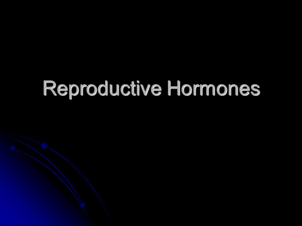 The Male Reproductive System The male reproductive hormone is testosterone – a steroid within the lipid family.