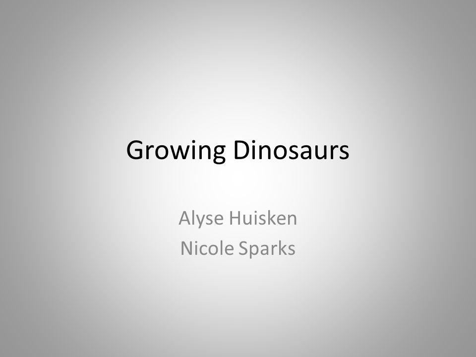 Growing Dinosaurs Alyse Huisken Nicole Sparks