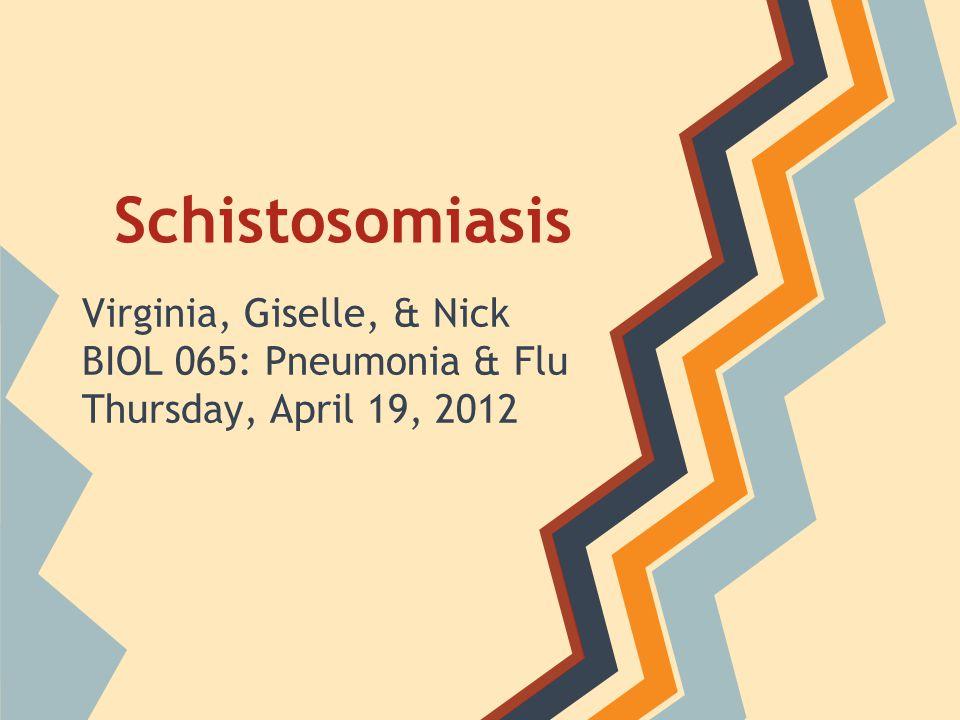 Schistosomiasis Virginia, Giselle, & Nick BIOL 065: Pneumonia & Flu Thursday, April 19, 2012