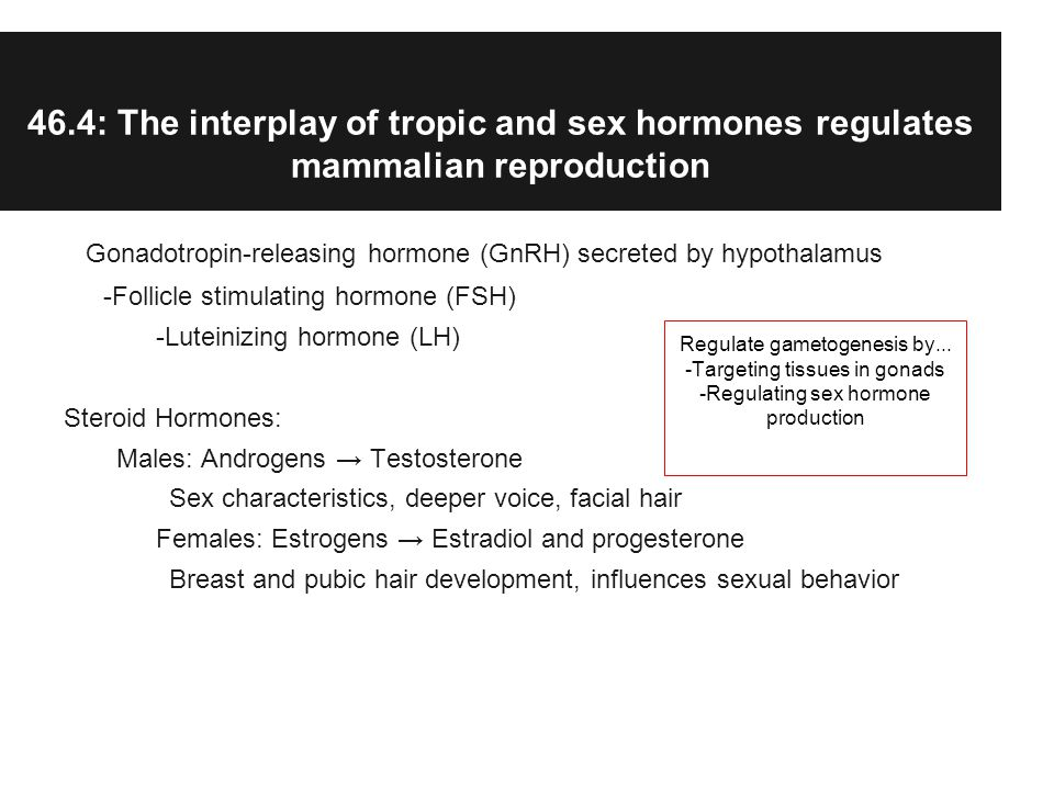 46.4: The interplay of tropic and sex hormones regulates mammalian reproduction Gonadotropin-releasing hormone (GnRH) secreted by hypothalamus -Follicle stimulating hormone (FSH) -Luteinizing hormone (LH) Steroid Hormones: Males: Androgens Testosterone Sex characteristics, deeper voice, facial hair Females: Estrogens Estradiol and progesterone Breast and pubic hair development, influences sexual behavior Regulate gametogenesis by...