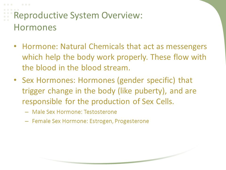 Reproductive Terminology Genital: The parts of the reproductive system that are outside of the body.