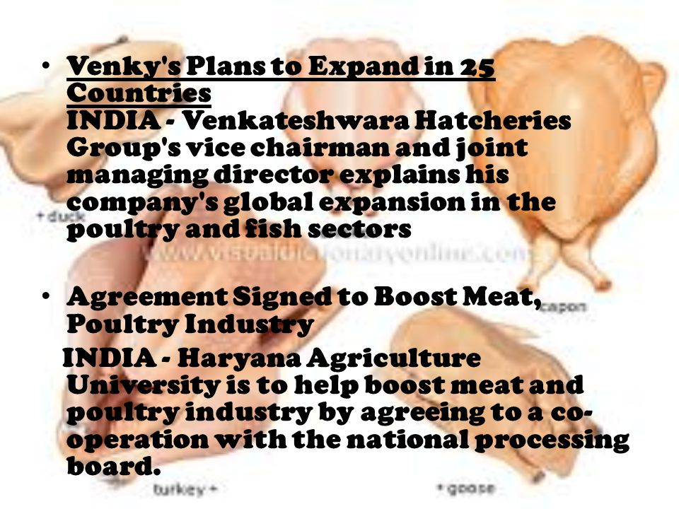 Venky s Plans to Expand in 25 Countries INDIA - Venkateshwara Hatcheries Group s vice chairman and joint managing director explains his company s global expansion in the poultry and fish sectors Agreement Signed to Boost Meat, Poultry Industry INDIA - Haryana Agriculture University is to help boost meat and poultry industry by agreeing to a co- operation with the national processing board.