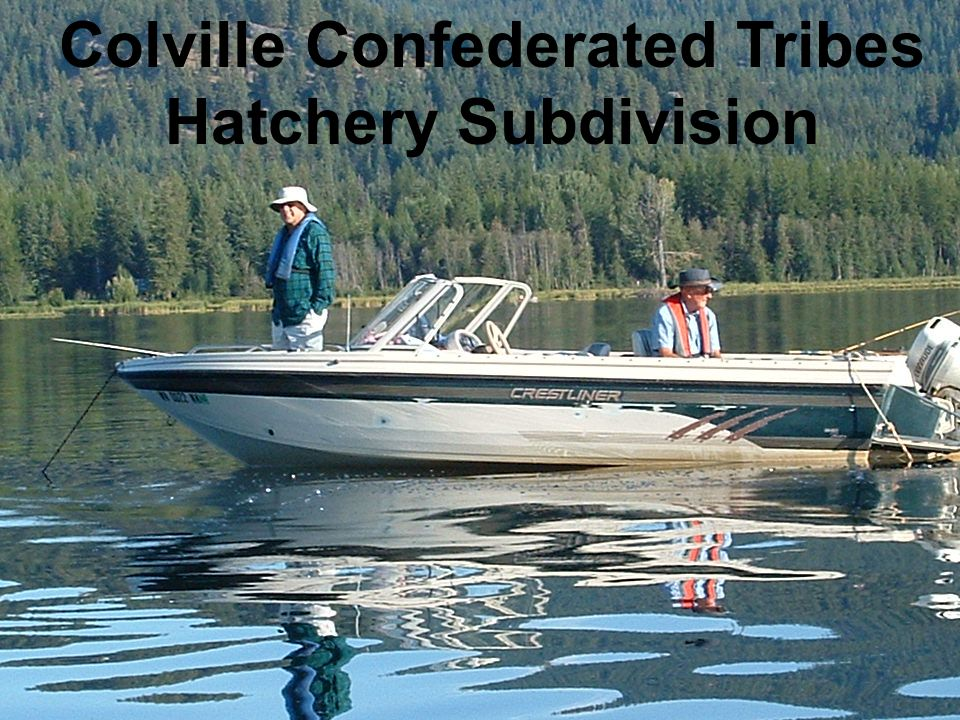 Colville Confederated Tribes Hatchery Subdivision