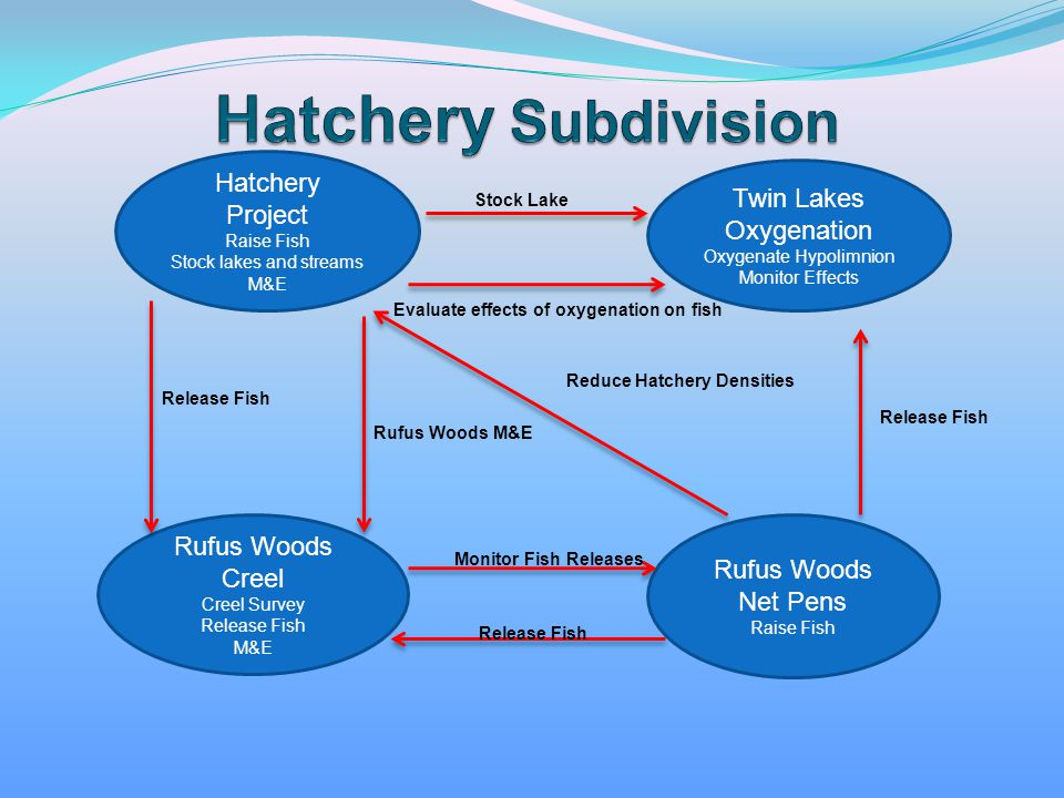 Hatchery Project Raise Fish Stock lakes and streams M&E Twin Lakes Oxygenation Oxygenate Hypolimnion Monitor Effects Rufus Woods Creel Creel Survey Re