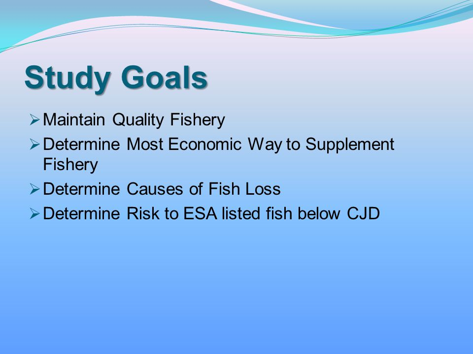 Study Goals Maintain Quality Fishery Determine Most Economic Way to Supplement Fishery Determine Causes of Fish Loss Determine Risk to ESA listed fish