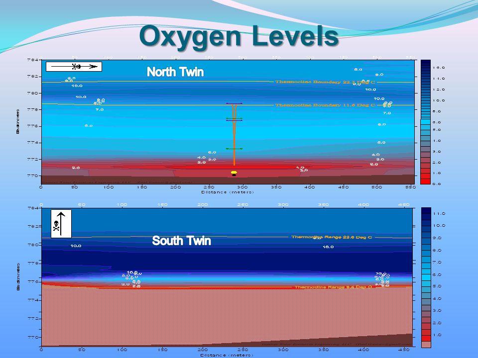 Oxygen Levels