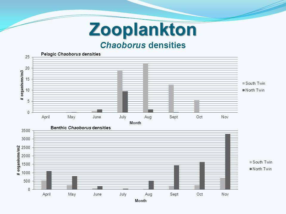 Zooplankton Zooplankton Chaoborus densities