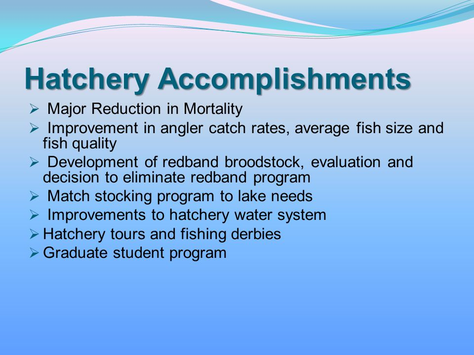Hatchery Accomplishments Major Reduction in Mortality Improvement in angler catch rates, average fish size and fish quality Development of redband bro