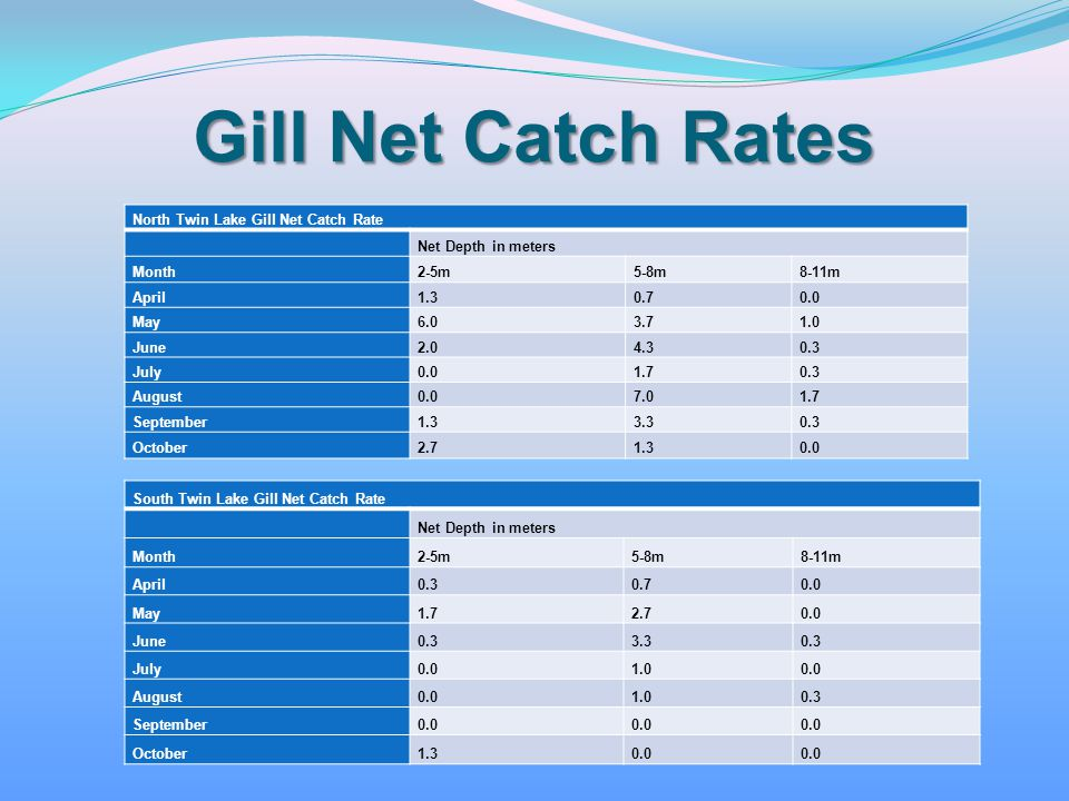 Gill Net Catch Rates North Twin Lake Gill Net Catch Rate Net Depth in meters Month2-5m5-8m8-11m April1.30.70.0 May6.03.71.0 June2.04.30.3 July0.01.70.
