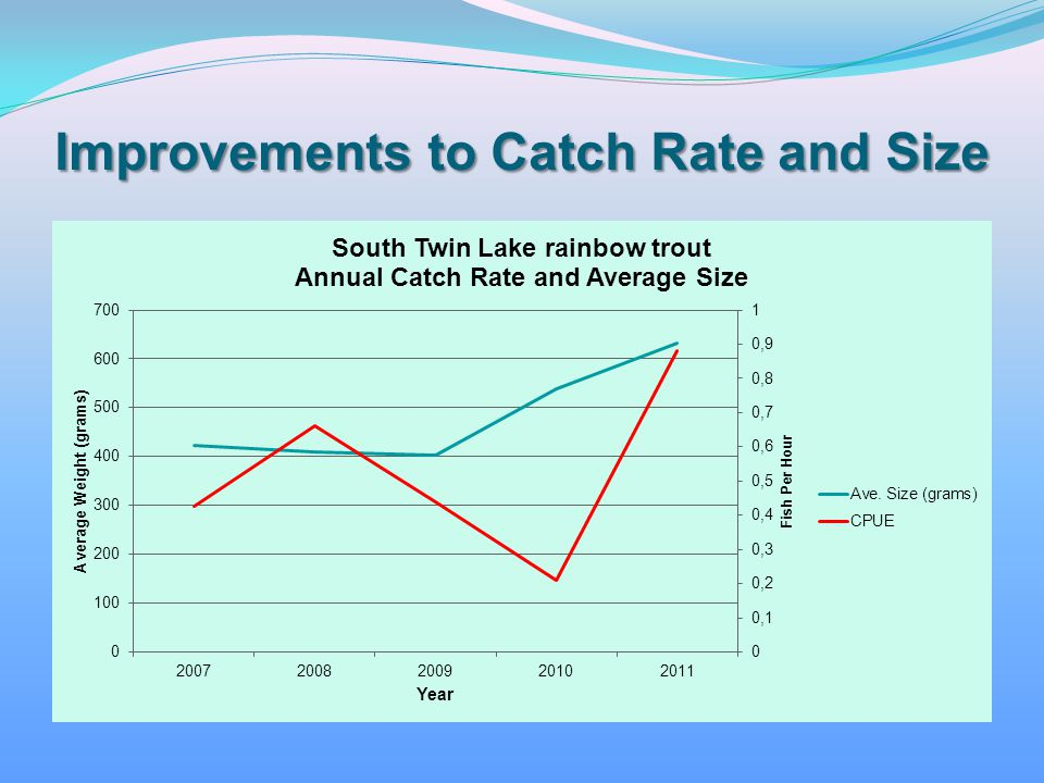 Improvements to Catch Rate and Size
