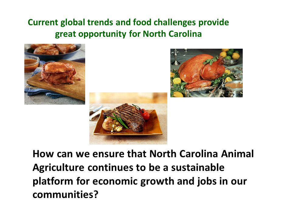 How can we ensure that North Carolina Animal Agriculture continues to be a sustainable platform for economic growth and jobs in our communities.