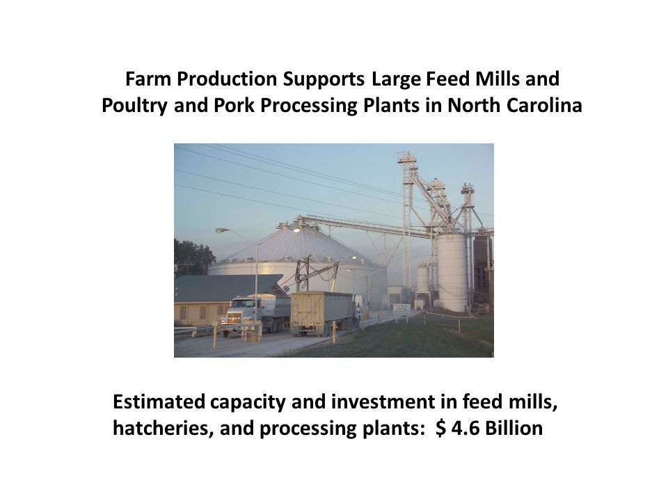 Farm Production Supports Large Feed Mills and Poultry and Pork Processing Plants in North Carolina Estimated capacity and investment in feed mills, hatcheries, and processing plants: $ 4.6 Billion