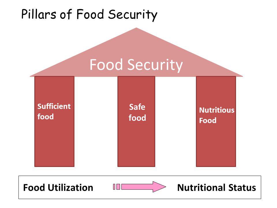 Food Security Sufficient food Nutritious Food Pillars of Food Security Safe food Food Utilization Nutritional Status