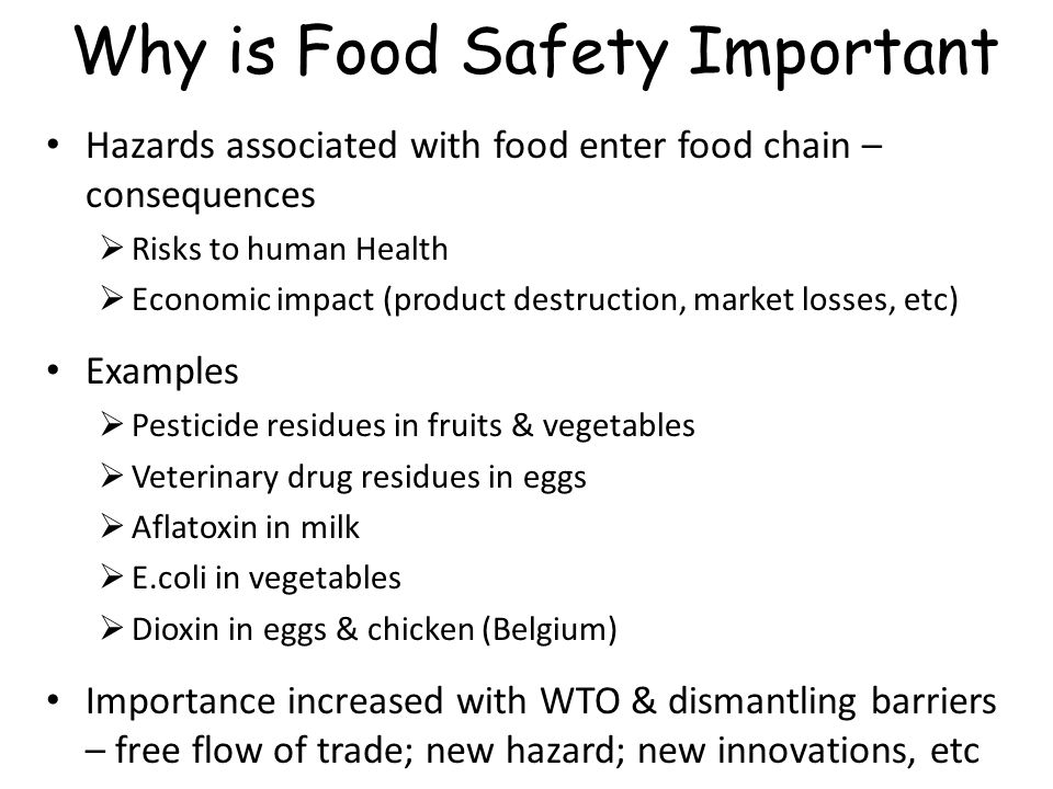 Why is food important?