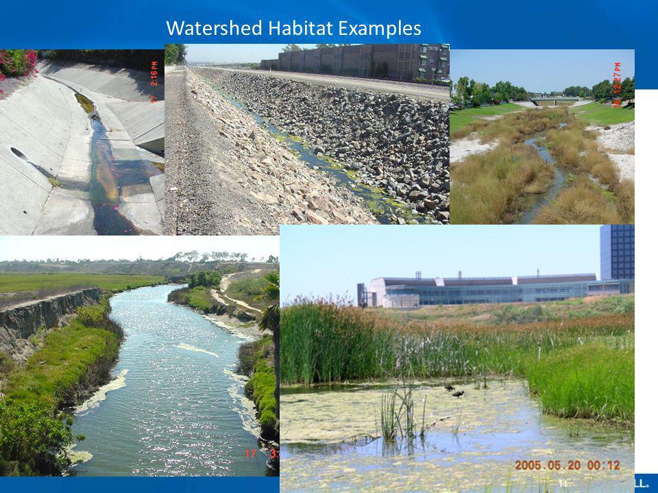 Watershed Habitat Examples 14