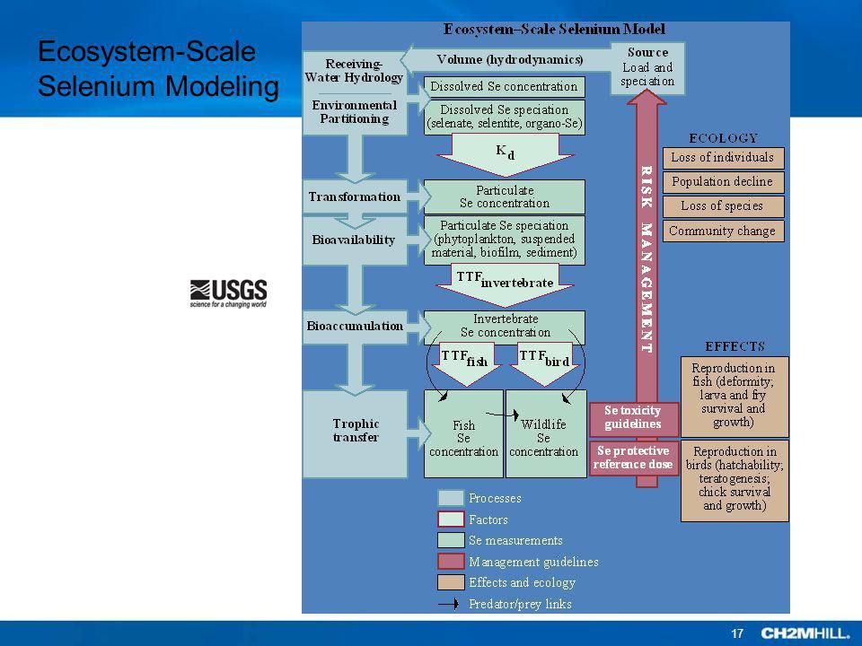 Ecosystem-Scale Selenium Modeling 17