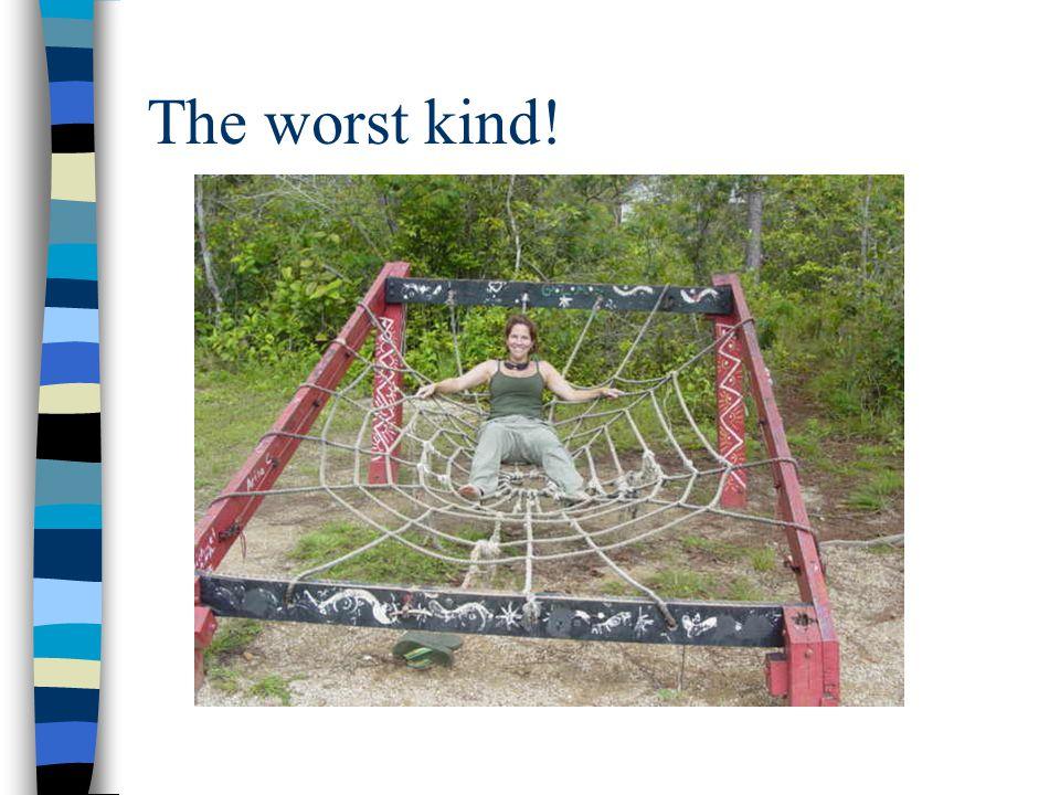 The worst kind!