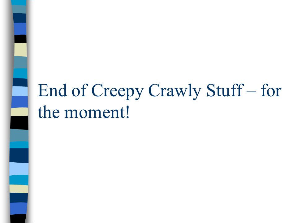 End of Creepy Crawly Stuff – for the moment!
