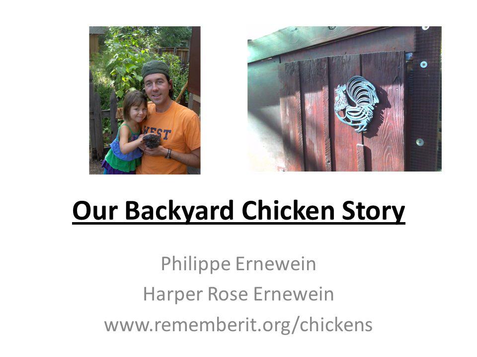 Our Backyard Chicken Story Philippe Ernewein Harper Rose Ernewein www.rememberit.org/chickens