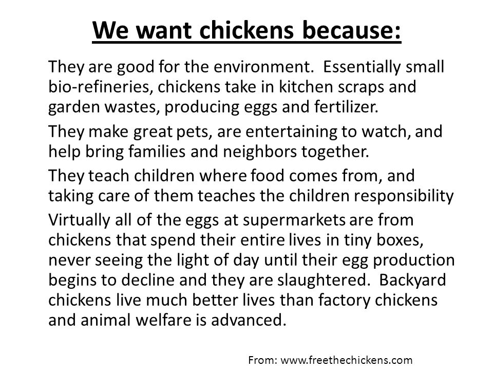We want chickens because: They are good for the environment. Essentially small bio-refineries, chickens take in kitchen scraps and garden wastes, prod